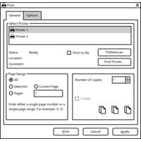 Print Dialog for Windows